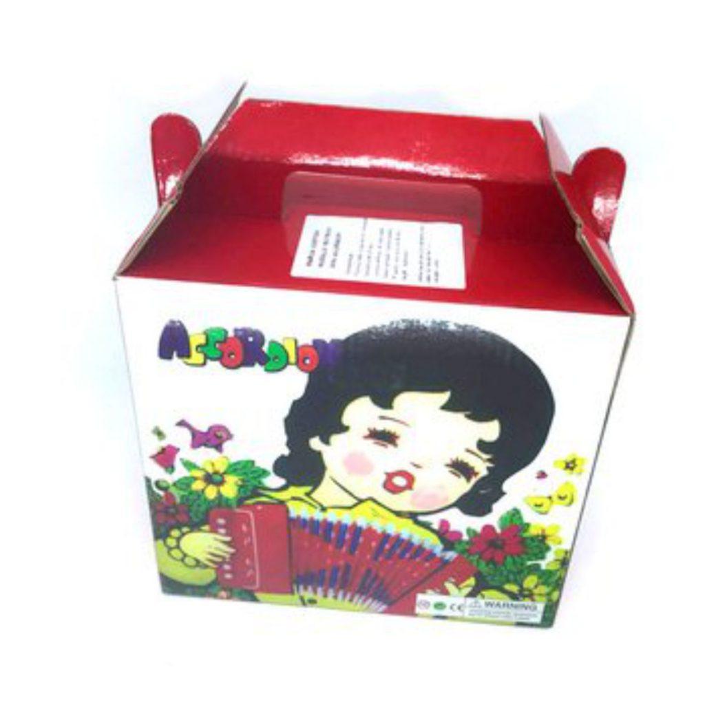 Embalagem do Acordeon infantil Custom