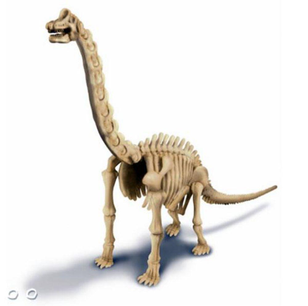 Dinossauro do kit de escavação de dinossauro braquiossauro montado