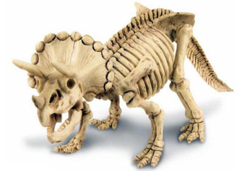 Dinossauro do kit de escavação de dinossauro tricerátopo montado